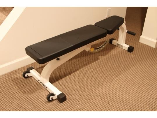 Pleasant Cybex Model 5437 91 Made In Usa Adjustable Workout Bench Creativecarmelina Interior Chair Design Creativecarmelinacom